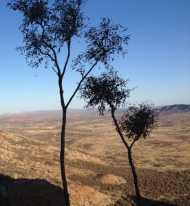 View from Mt Gillen