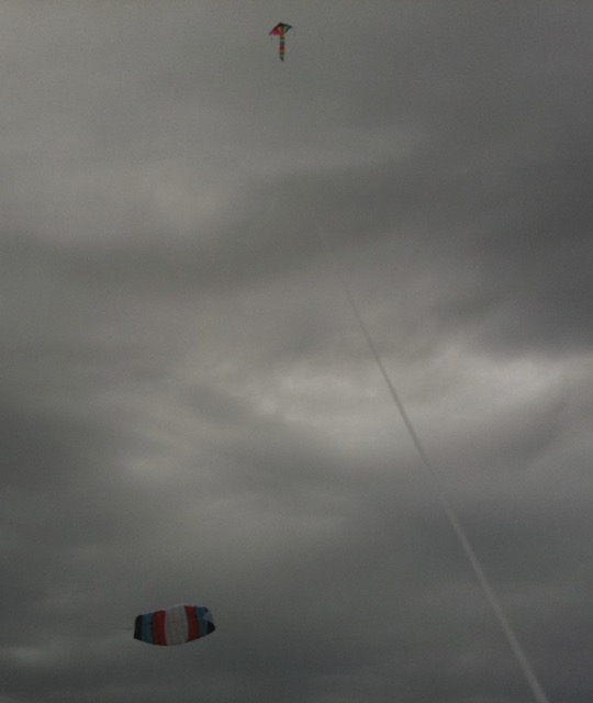 150209 kites